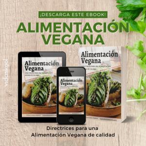 ebook alimentación vegana