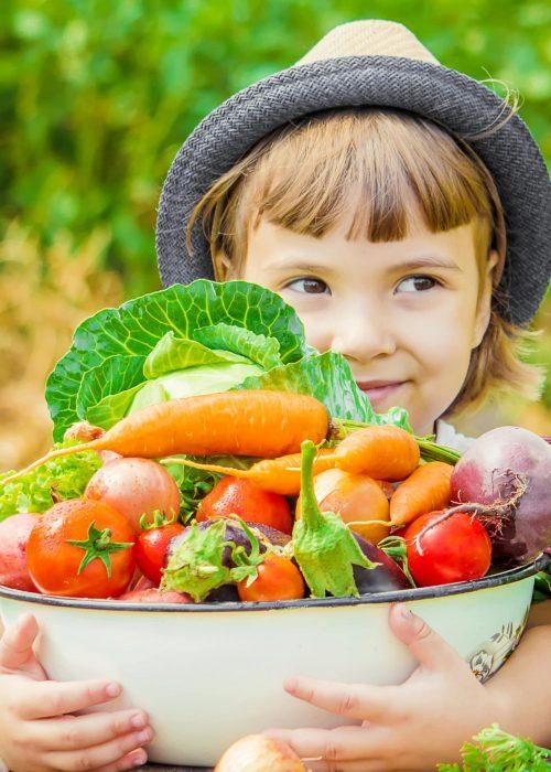 curso nutrición saludable para niños